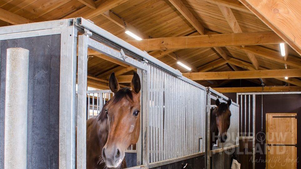 Paardenstallen